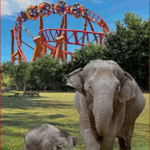 Parc zoo le PAL