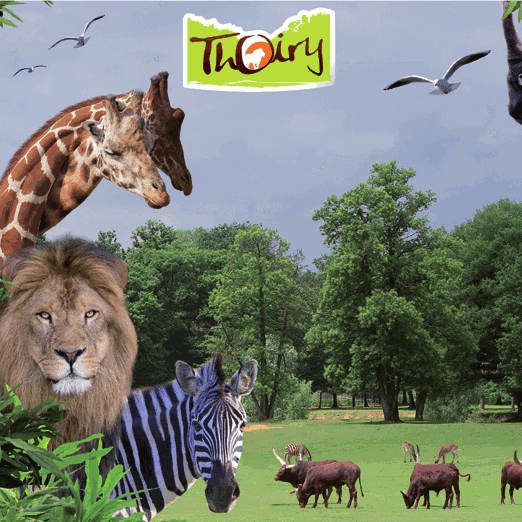 Zoo de thoiry billetspro for Parc animaux yvelines